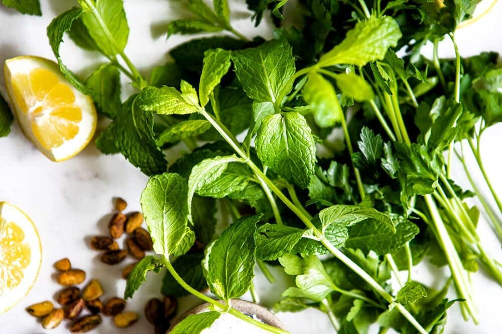 mint leaves for pesto recipe