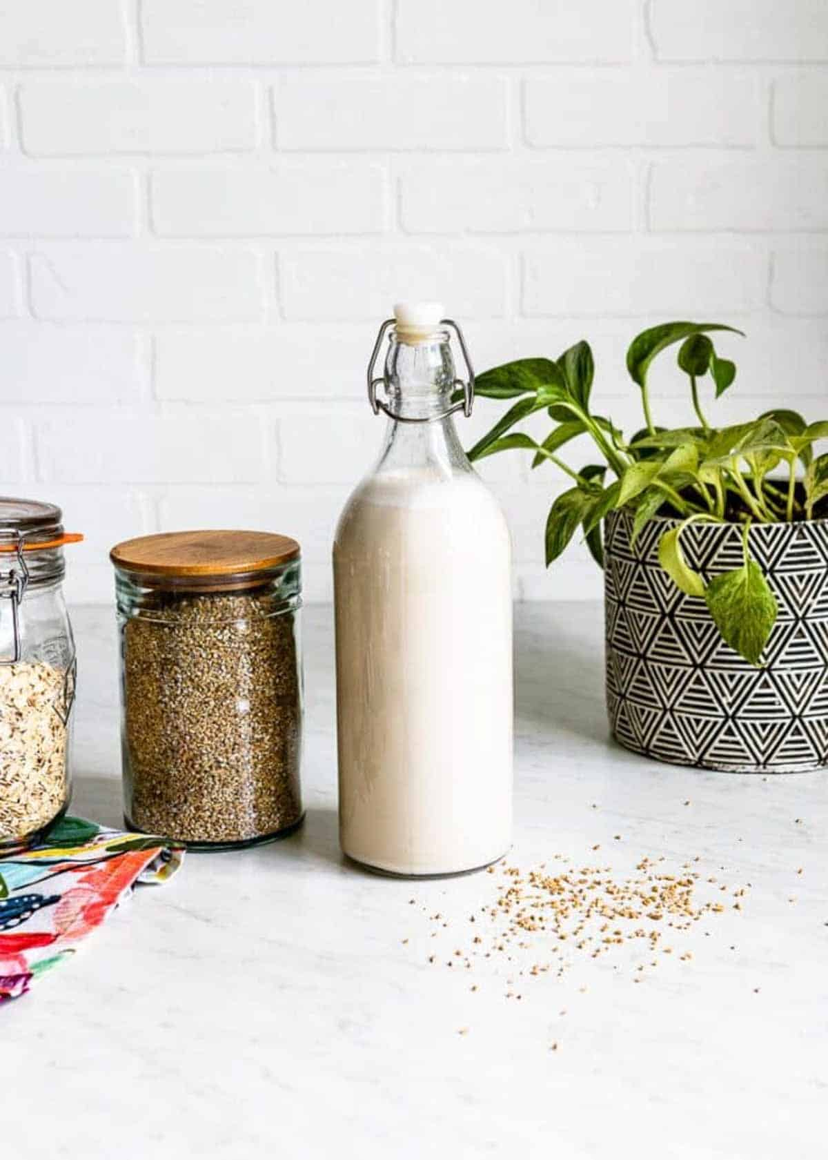 homemade plant milk