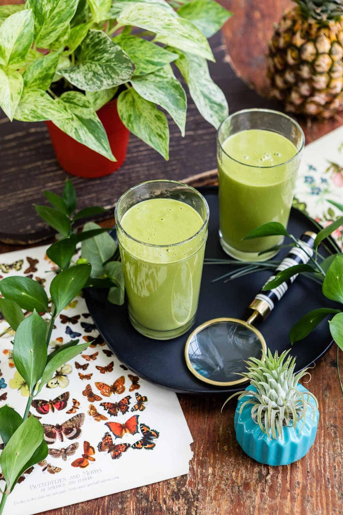 adrenal fatigue diet smoothie