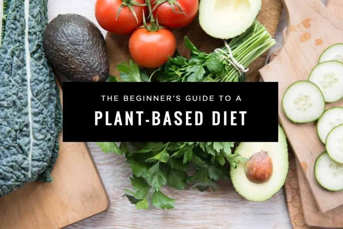whole food plant based diet explained